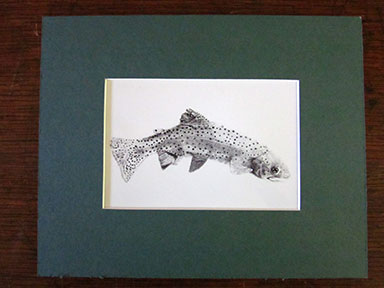 Print of Beaver Trout