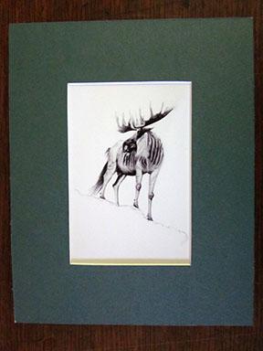 Print of Wampahoofus