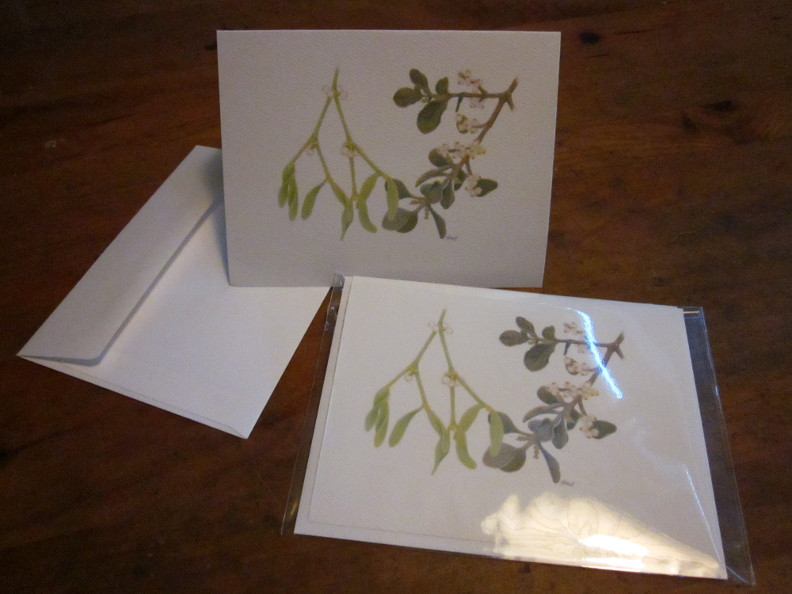Picture of mistletoe card in plastic sleeve
